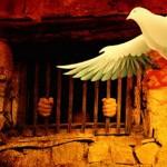 الجزائر – صحيفة المواطن – على ابواب يوم الاسير الفلسطينى – ملف الاسرى صباح الاثنين 23-3-2015