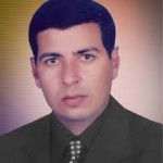 محسن عبد المعطي محمد
